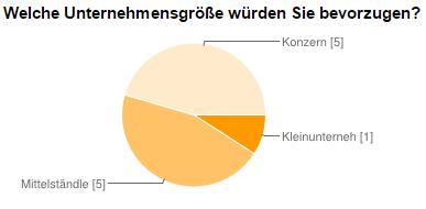 Fragebogen - Unternehmensgröße